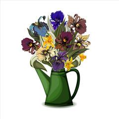 Irises  in watering -pot