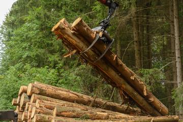 gmbh kaufen ohne stammkapital gmbh gründen haus kaufen Holzverarbeitung Vorratskg gmbh mantel kaufen verlustvortrag
