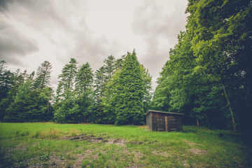 Small wooden shed on a field
