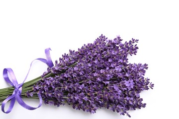 Wall Mural - Bunch of lavender.