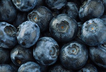 Blueberry detail background