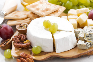 camembert, grapes and crackers, closeup