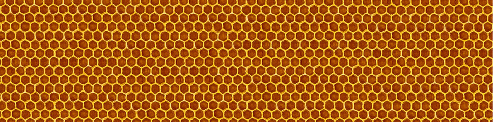 image of honeycomb closeup