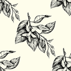 Sunny Mandarin Ink Pattern