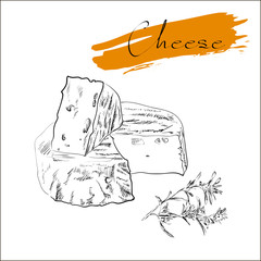 Cheese types. Delicious fresh cheese variet cheese