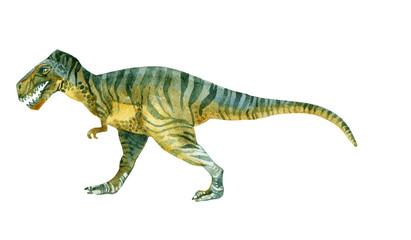 Tyrannosaurus Rex (Dinosaur)