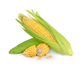corn isolated on white background.