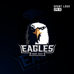 Modern professional eagle logo for a sport team.
