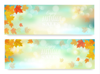 Wall Mural - Two abstract autumn banners with color leaves.Vector