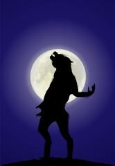 Werwolf verwandelt sich in einer Vollmondnacht