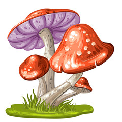 Cartoon mushroom on white background
