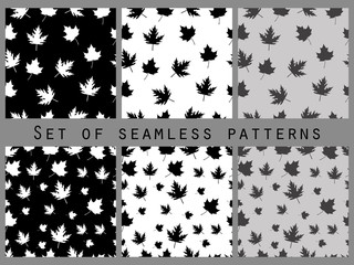 Autumn leaves black and white seamless pattern set. Vector illustration.