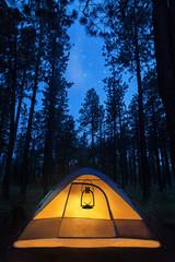 Wall Mural - Illuminated Camping Tent Under Stars