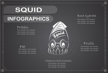 Squid Infographics, Vector illustration.