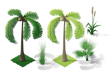 Isometric plants and grass, trees with transparent shadow for landscape game design