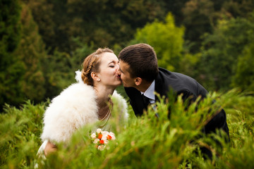 Groom kisses a bride in fur shawl bending over the bushes