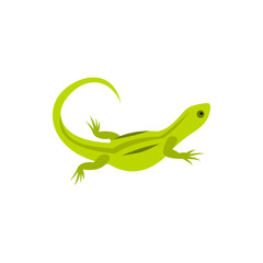 Lizard icon in flat style on a white background
