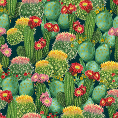 pattern with blooming cactuses