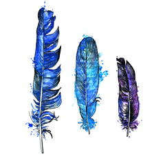 watercolor set of feathers