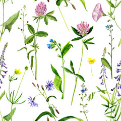 seamless pattern with watercolor drawing flowers and herbs