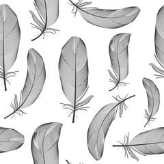 Bird Feather Hand Drawn Seamless Pattern Background Vector Illus