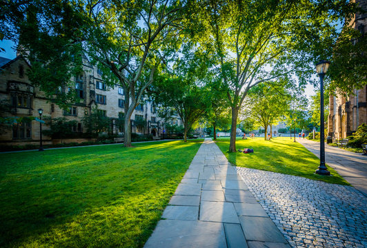 Walkway and buildings on the campus of Yale University, in New H