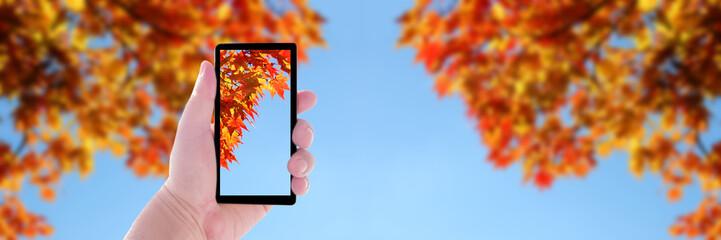 秋 スマートフォン 撮影