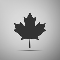 Canadian Maple Leaf icon on grey background. Adobe illustrator