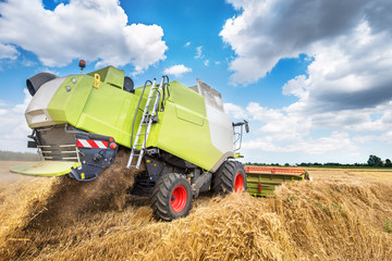 Wall Mural - combine harvester working on a wheat field.