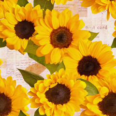 Seamless sunflowers pattern on fragments of old letters