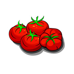 Red fresh tomatoes vector illustration