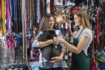 Saleswoman Playing With French Bulldog Carried By Customer