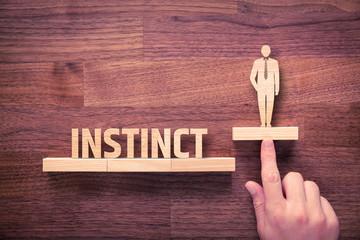 Business instinct