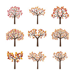 Set of color autumn vector trees.