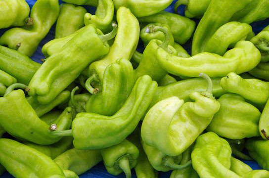 Bright green chili peppers for market displayed on light blue