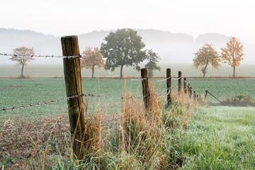 Fotoväggar - entlang eines Zauns in neblige Landschaft