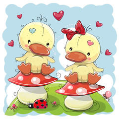 Two Cute Cartoon Ducks