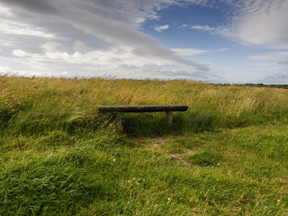 Wooden bench in a field