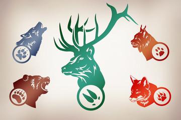 Иллюстрация по следам животных. Волк, Медведь, Рысь, Лиса, Олень.