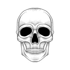 Vector illustration of dotted skull in black isolated on white background. Front view. Element for tattoo design or Halloween in dotwork style. Creative concept for tattooing and trash decor.