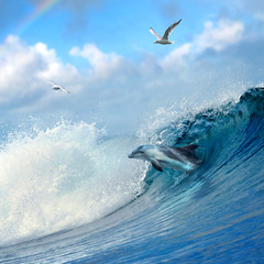 ocean-view playful dolphin leaping out from breaking ocean wave and seaguls flying on cloudy sky