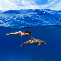 swimmer girl in pink swimsuit and dolphin playing in the sea underwater