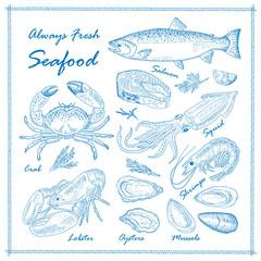 Hand drawn seafood