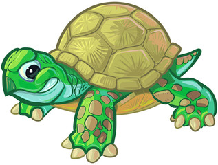 Cute Tough Cartoon Baby Turtle or Tortoise