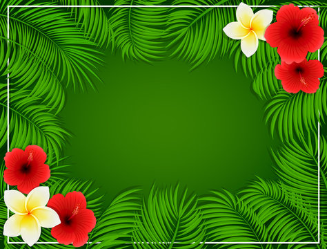 Frame from palm leaves and flowers on green background