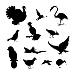 Set of simple bird silhouette. black color