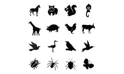 animal , birds and bugs