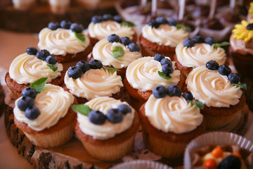 Cupcakes baked dessert with berries