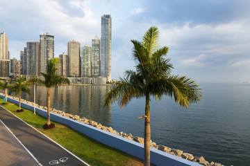 View of the financial district in downtown City of Panama, Panama, with a cycling lane and Palm Trees; Concept for travel in Panama