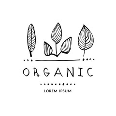 Vector illustration with leaves. Organic logo.